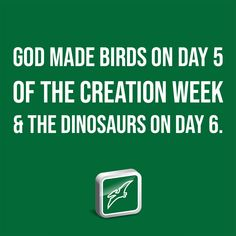 God made birds on Day 5 of the creation week and the dinosaurs on Day 6. Institute For Creation Research, Western Michigan University, Young T, Recent Discoveries, Baby Dinosaurs, Earth Science, T Rex, Discovery, Evolution