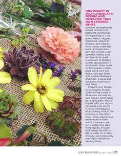 Leaf Summer 2012 Issue