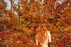 Leaves_Fall_2013_48x72_web1.jpg (1000×667)