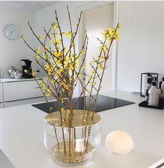 Cactus Flower, Flower Vases, Exotic Flowers, Purple Flowers, Yellow Roses, Pink Roses, Peonies Garden, Flowers Garden, Modern Flower Arrangements