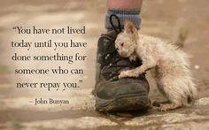 """""""No has vivido hoy hasta que no hayas hecho algo por alguien que nunca podrá compensarte"""" John Bunyan"""