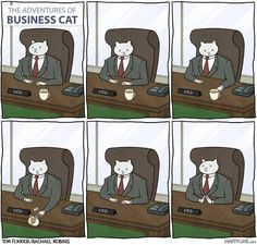 The Adventures of Business Cat by Tom Fonder and Rachel Robins | See more about cats, robins and funny pictures.
