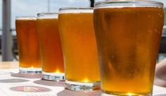 Malt producer sees volumes growth as craft beer market takes off