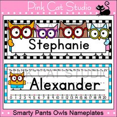 Smarty Pants Owls Theme Classroom - Nameplates - Editable