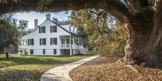 E.D. White Historic Site ADDRESS 2295 La. Hwy. 1 | Thibodaux, 70301 985-447-0915 HOURS Tuesdays – Saturdays, 10 a.m. – 4:30 p.m. Closed Sundays, Mondays and state holidays. This National Historic Landmark, situated on the banks of scenic Bayou Lafourche near Thibodaux, was the residence of two of Louisiana's foremost political figures: Edward Douglas White, who was governor from 1835 to 1839, and his son, Edward Douglass White, who was appointed to the United States Supreme Court in 1894 and…