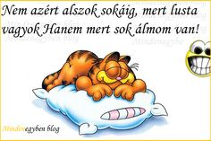 Ahh, a good night's sleep. You feel great when you have a night (or two or more) of deep blissful sleep. Getting that sleep seems to be hard. I just heard that sleep deprivation is the numbe… Cartoon Photo, Cartoon Pics, Cartoon Drawings, Cartoon Characters, Garfield Wallpaper, Cartoon Wallpaper, Wallpaper Wallpapers, Cat Dog Cartoon, Dog Cat