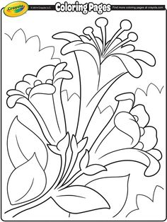 coloring pages easter lilies ii on crayolacom - Crayolacom Coloring Pages