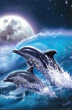 Dolphin Facts For Children Orcas, Dolphin Facts, Dolphin Painting, Dolphins Tattoo, Bottlenose Dolphin, Wale, Delphine, Water Life, Mundo Animal