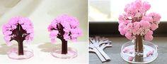 Magic Sakura Home Cherry Blossom Set of 3