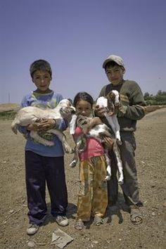 Acabo de compartir la foto de Milton Rodriguez Triviños que representa a: Niños pastores de San Nicolás -  Barranca