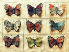 3d embroidery Butterfly collection/assemblage by Corinne Young - (textile, fabric, fiber art)