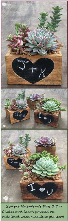 Valentine's Day DIY - how to paint chalkboard heart on reclaimed wood succulent planter! :)