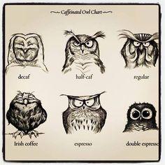 #coffee #coffeehumor  Coffee Owls.