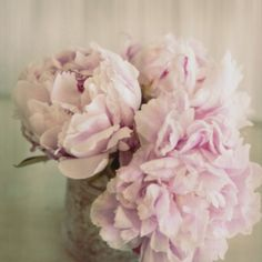 peonies obsession! you should have some on your table too