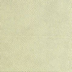 Fabric, Wallpaper   Clarence House  Shagreen
