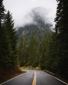 A peaceful drive through the forrest. No cell reception far from the hustle and bustle of the city and fresh mountain air. by taylormichaelburk http://ift.tt/1ZtZFl4