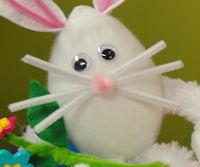 Hoppin' through the bunny trail!