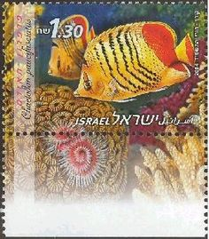 2004 Fish | History of Israel - Animal Stamps