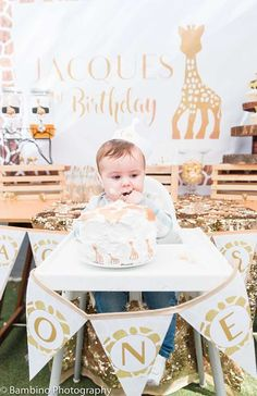 Sophie the Giraffe 1st Birthday Party | CatchMyParty.com