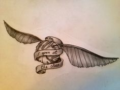 Every now and then I draw my obsessions, I present to you the golden snitch.