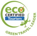 Explore two Australian icons with this rainforest and reef package. Includes Great Barrier Reef Tour, Jungle Surfing ziplining, accommodation and more. Great Barrier Reef Tours, Eco Cabin, Camping Tours, Glass Bottom Boat, Coconut Cheesecake, Sustainable Tourism, Adventure Activities, Travel And Tourism, Cruise