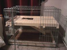 Indoor Housing - Rabbits United Forum