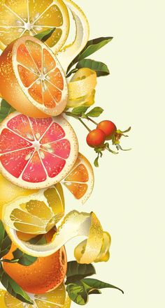 Find Vector Vintage Citrus Border Lemon Mandarin stock images in HD and millions of other royalty-free stock photos, illustrations and vectors in the Shutterstock collection. Thousands of new, high-quality pictures added every day. Watercolor Fruit, Watercolor Paintings, Aesthetic Iphone Wallpaper, Aesthetic Wallpapers, Cute Wallpapers, Wallpaper Backgrounds, Photo Fruit, Illustration Noel, Flower Phone Wallpaper