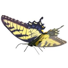 Fascinations Tiger Swallowtail Butterfly Model Nature Metal Earth for sale online Metal Earth Models, Metal Models, Earth 3d, Metal Model Kits, Dark Wings, Largest Butterfly, Black Tigers, 3d Laser, Tiger Stripes