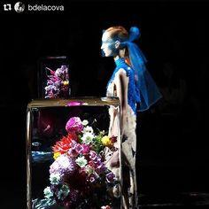 #Repost @bdelacova with @repostapp ・・・ @driesvannoten y punto. Las flores estaban conservadas en hielo #icedflowers by @azumamakoto #azumamakoto💧🙌🏻