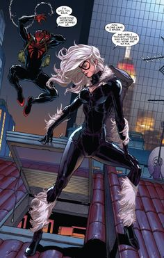 Black Cat meets the Superior Spider-Man (from Superior Spider-Man #20)