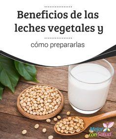 Dieta disociada leche sin lactosa marcas