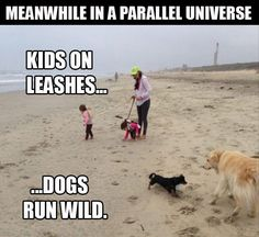 a-kids-on-leashes-dogs-run-free.jpg (620×569)