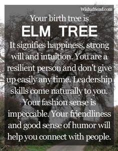 Your Birth Tree: Elm Tree...It's different for each birthdate!..Jan.20 <3.. Seems Legit!! #BirthTree