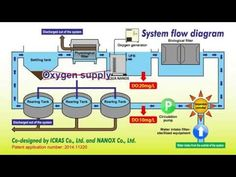 A closed recirculating aquaculture system (CRAS) using oxygenated ultra fine bubbles - YouTube