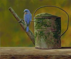 Rustic Perch | A painting by Camille Engel, contemporary realist