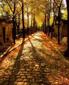 Paris Gold & Browns... in Fall… Cobblestone Path, Pere LaChaise Cemetery, Paris, France