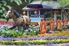 Botanická záhrada - Singapur