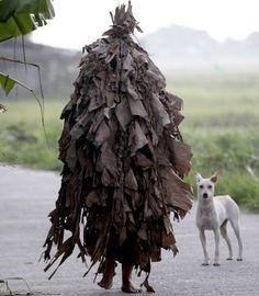 A barefoot worshipper makes his way to church past a rather surprised-looking dog - John the Baptist feast day celebrations in the Philippines