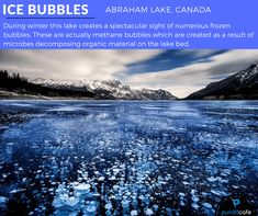 "Abraham Lake is a man-made lake in Canada where temperatures fall to as low as -300 C during winters, making the lake freeze. This results in a spectacular sight of numerous ""frozen bubbles"" that has made the lake popular.    Cause: The frozen bubbles are actually bubbles of methane gas that are formed as a result of microbes decomposing organic material on the lake bed"