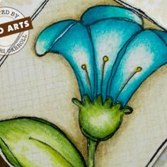Learn how to get a dramatic coloring effect using colored pencils on your stamped arts and crafts with this stamping video tutorial.