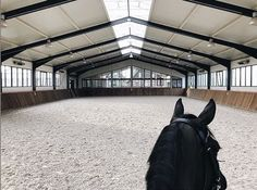 prefab Indoor Riding Arenas And Steel Horse Barns Barn Stalls, Horse Stalls, Dream Stables, Dream Barn, Horse Barn Designs, Horse Arena, Horse Barn Plans, Indoor Arena, Equestrian Style