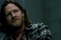 Donal Logue, fell in love with him in The Tao of Steve