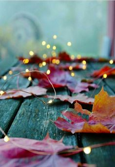 Pin by e brosky on wallpapers fall wallpaper, autumn photography, fall deco Autumn Aesthetic, Christmas Aesthetic, Autumn Photography, Photography Ideas, Fairy Light Photography, Landscape Photography, Sparkler Photography, Umbrella Photography, Photography Books