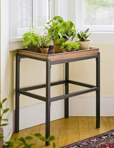 Have you run out of room for your houseplants? This sturdy plant stand is the answer. Gardener's Supply exclusive.