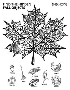 hidden fall objects free printable coloring pages
