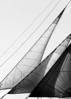 Sails lines black and white