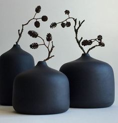 Flowers from the winter forest. Flowers from the winter forest. Ikebana, Pottery Vase, Ceramic Pottery, Ceramic Art, Ceramic Jewelry, Deco Floral, Arte Floral, Flower Vases, Flower Arrangements