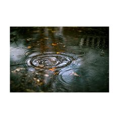 rain rain, never go away found on Polyvore featuring pictures, backgrounds, photos, nature and photography