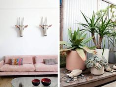 Cocoon Botanicals: California Style — Cocoon Home Design Cocoon ...