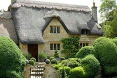 Thatch roof.